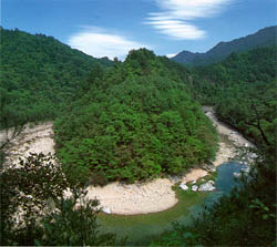 백담계곡의 수립과 물 (forests and streams in the Backdamgyegok(valley))